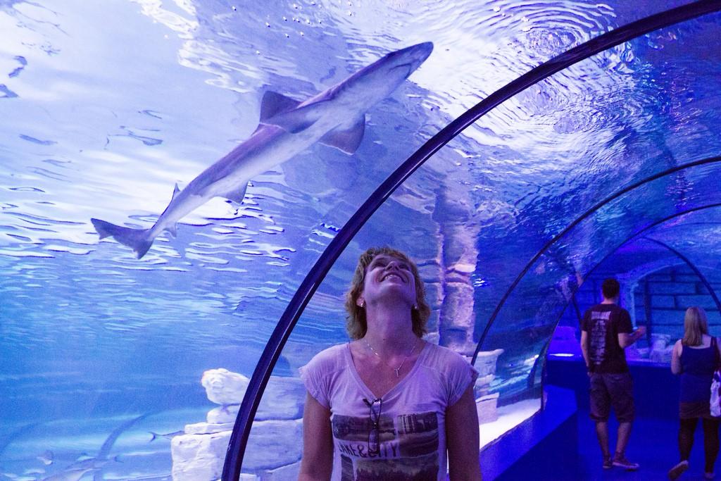 Океанариумы в Турции Antalya Aquarium