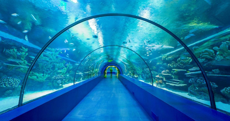 Antalya Aquarium туннель