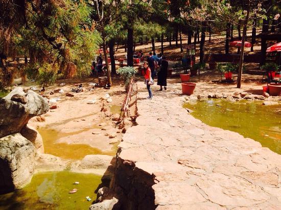 Прогулка по зоопарку в Турции в Газиантеп (Антеп)